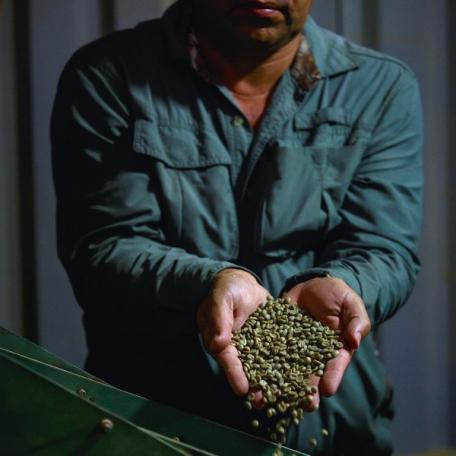 Café GRAINS NOBLES - 250 g moulu